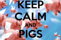 keep-calm-and-pigs-might-fly